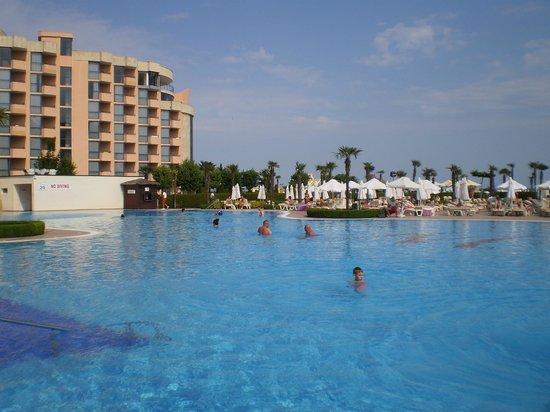 DIT Majestic Beach Resort : poolside