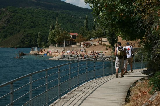 Lac de Villefort : chemin autour du lac