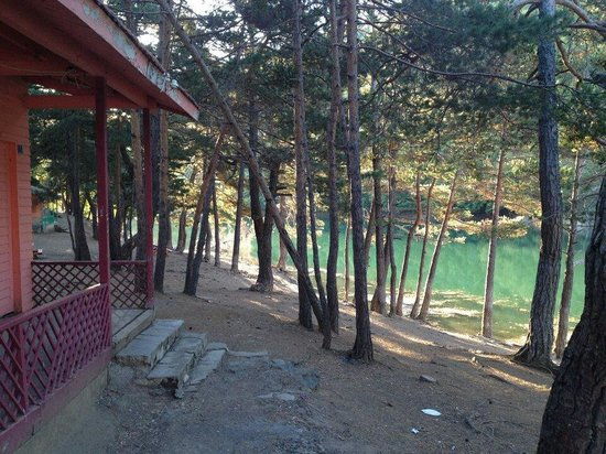 Amasya, Tyrkiet: SUAT SEZGIN