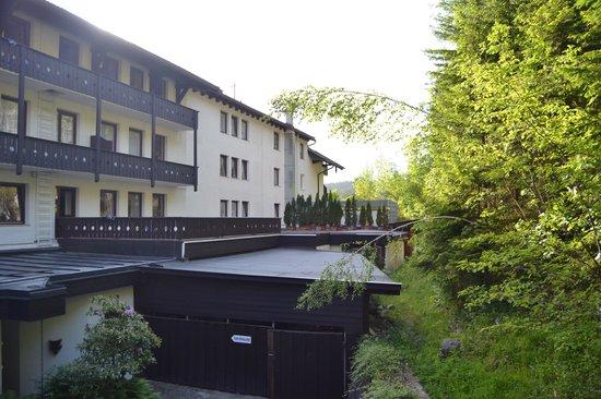 Eibsee Hotel : Habitacion Doble - vista al bosque: Balcon