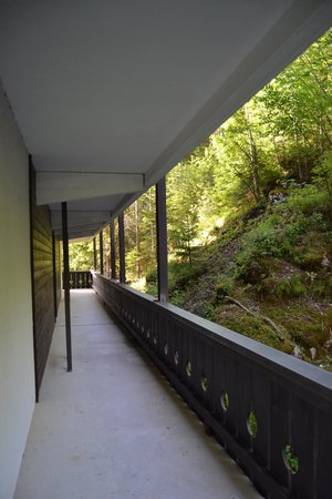 "Eibsee Hotel : Habitacion Doble - vista al bosque: Balcon ""L"""
