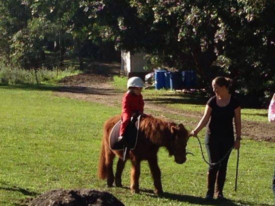 Thunderbird Park: Horse riding for kids