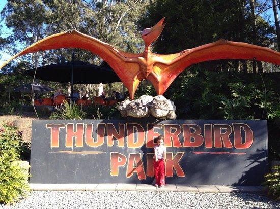 Thunderbird Park: Thunderbird