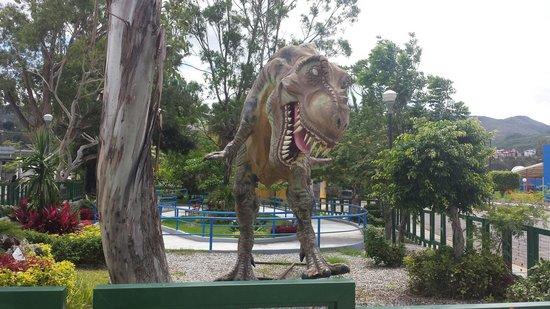 """Chilpancingo de los Bravo, Мексика: Jardin botanico La avispa"""""""