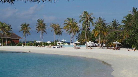 Maafushivaru: Beach