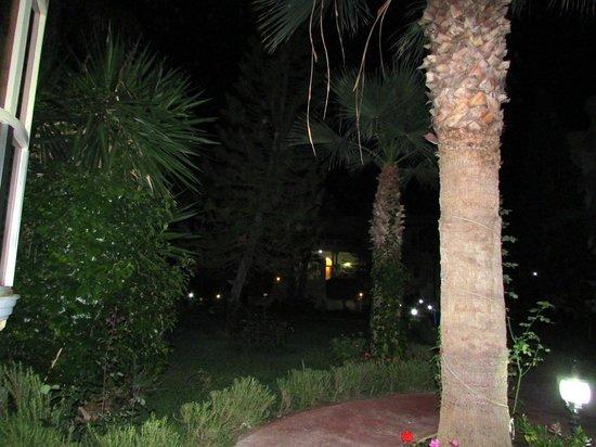 El Hana Palace Caruso Hotel : gardens