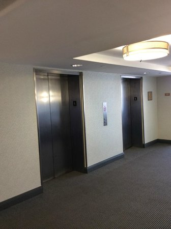 Metro Points Hotel - Washington North : Renovated Hallways