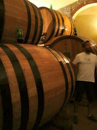 Tuscany Bike Tours: Chianti barrels