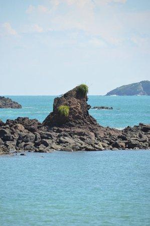 Playa Manuel Antonio: Beautiful