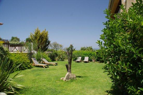 Residence Guddelmoni : Vue d'un des espaces du Jardin