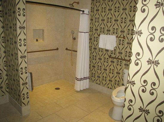 Casino Del Sol Resort: handicapped shower
