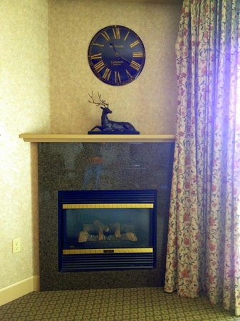Hotel Bellwether: The fire place in the living room