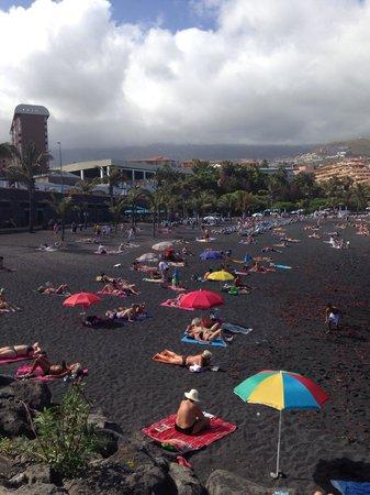 Rooftop pool and jacuzzi picture of elegance dania park puerto de la cruz tripadvisor - Hotel dania park puerto de la cruz ...