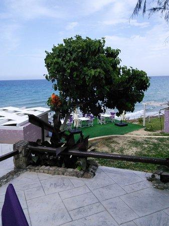 To Ladofanaro on the Beach: Beach Bar