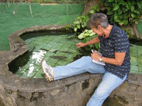Mara Palace Hotel: Lago com peixes