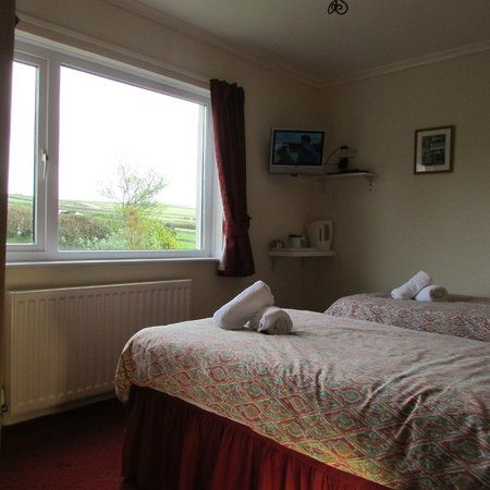 Sunnymeade Country House: Twin Room