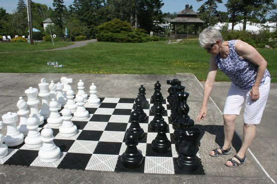 Newagen Seaside Inn: Play a giant chess match
