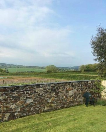 Trenear Bed and Breakfast: Views from the sun terrace