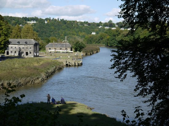 Trenear Bed and Breakfast: The Tamar Valley - local area