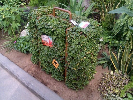 Montreal Botanical Gardens: suitcase2