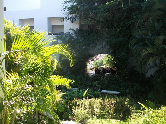 Camino Real Zaashila : garden
