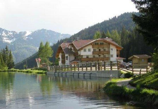 Wellness Hotel Lupo Bianco: --