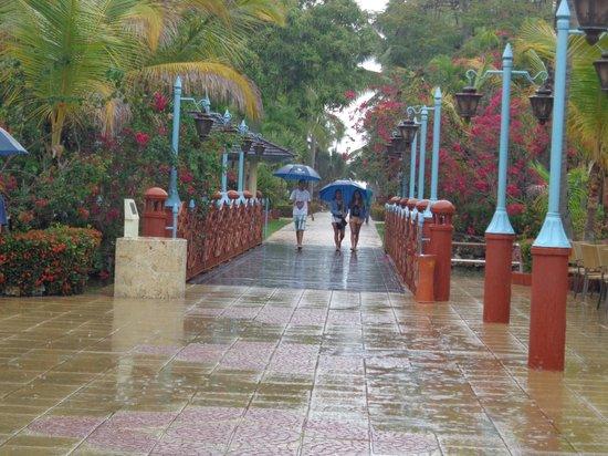 Iberostar Bavaro Suites: Yendo a desayunas bajo la lluvia!!geniales los paraguas!!
