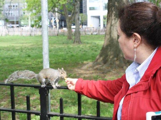 """Battery Park : """"Preciosa y educada"""""""