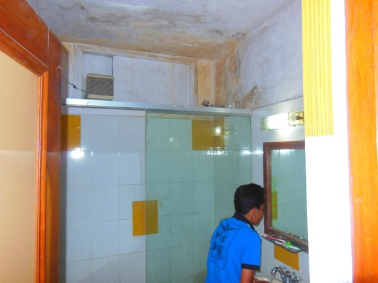 Hotel Durga Palace: PALED WALLS, HORRIFYING BATHROOMS