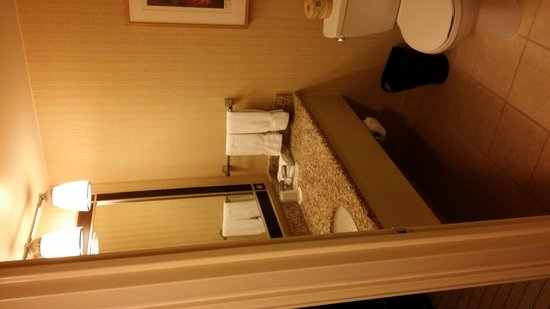 Sheraton Seattle Hotel: Bathroom