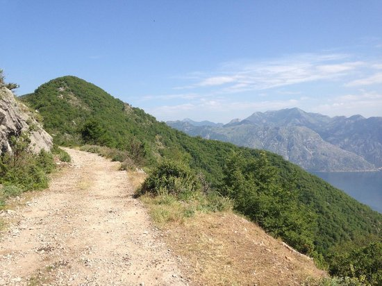 Montenegro+: Somewhere on the way to the top of Vrmac
