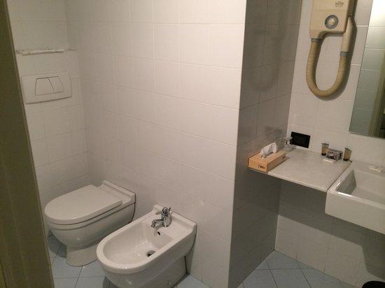 Metropole Suisse Hotel : Bathroom