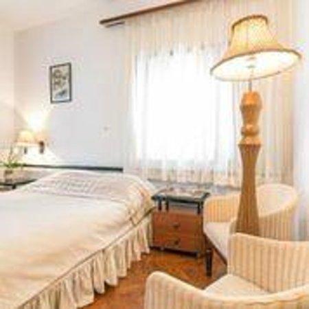 Vila Balkan : Room