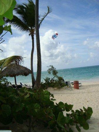 Grand Palladium Punta Cana Resort & Spa: Vista de la playa