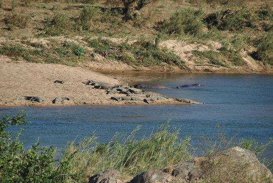 Pestana Kruger Lodge: View from room of the river and into Kruger