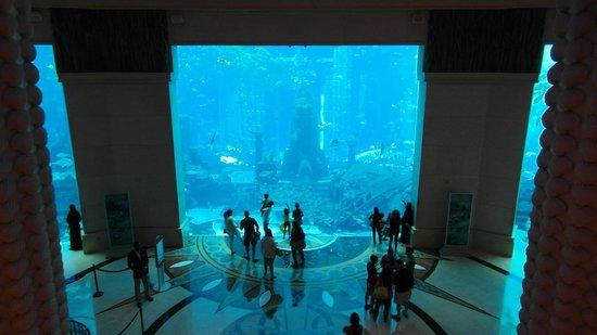 Atlantis, The Palm: Underwater Aquarium
