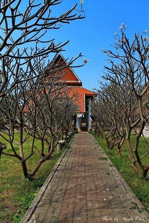 Wat Thammikarat : Entrance Wiharn white buddha image