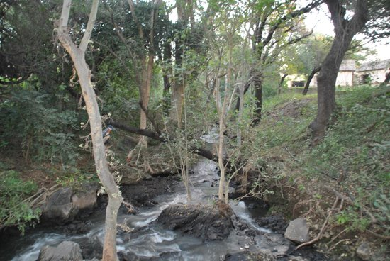 Pestana Kruger Lodge: river running through hotel