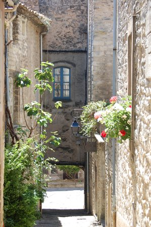 Les Terrasses du Luberon: Beautiful Bonneiux!