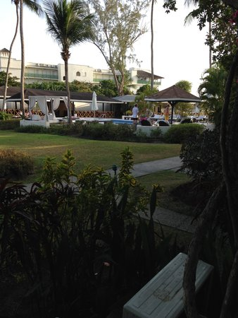 Discovery Bay by Rex Resorts: garden