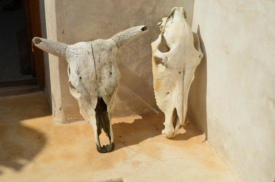 Lamu House Hotel: Detalle decorativo en terraza