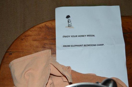 Elephant Bedroom Camp: Detalle para los novios. Botella de champan