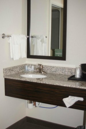 Holiday Inn Express and Suites Colorado Springs First and Main: Shower separate from the vanity