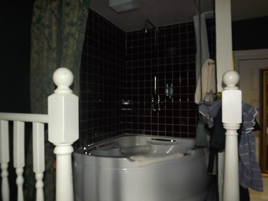 Lumley Castle Hotel: Elevated bath/shower in room