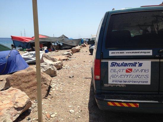 Shulamit's Eilat Diving Adventures: Sempre apoiados...