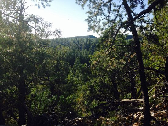 Zion Ponderosa Ranch Resort: Our Beautiful View