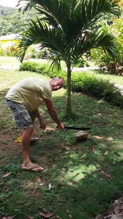 Mermaid's Secret - Riverside Retreat: Tim cutting us open a coconut straight off the tree!