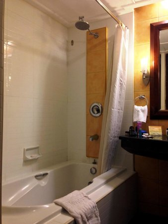 Boracay Mandarin Island Hotel: The room's bath