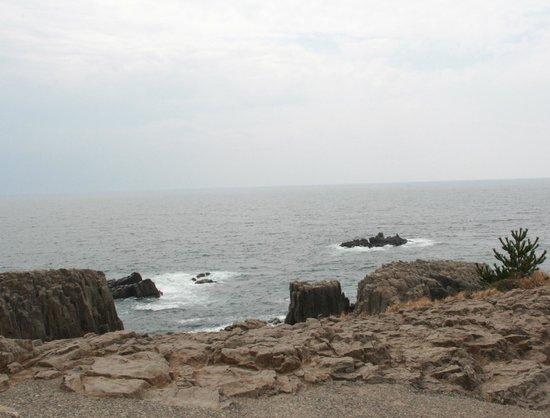 Cliffs - Picture of Tojinbo Cliff, Sakai - TripAdvisor