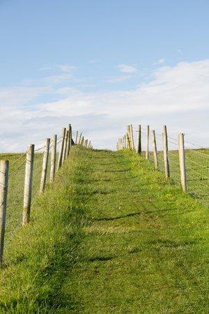 Swallows Rest : SW Coastal Path